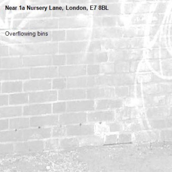Overflowing bins-1a Nursery Lane, London, E7 8BL