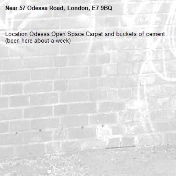 Location Odessa Open Space:Carpet and buckets of cement (been here about a week)-57 Odessa Road, London, E7 9BQ