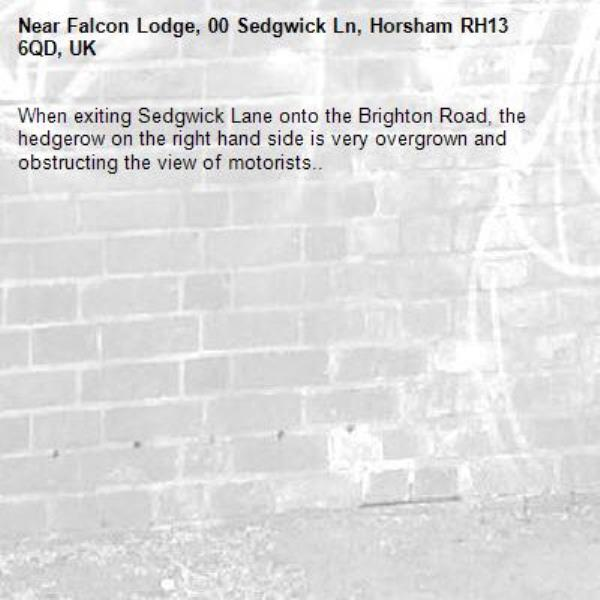 When exiting Sedgwick Lane onto the Brighton Road, the hedgerow on the right hand side is very overgrown and obstructing the view of motorists..-Falcon Lodge, 00 Sedgwick Ln, Horsham RH13 6QD, UK