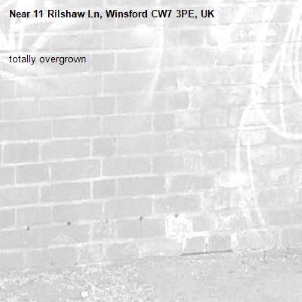 totally overgrown -11 Rilshaw Ln, Winsford CW7 3PE, UK