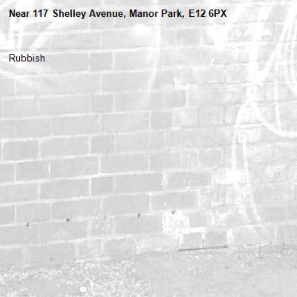 Rubbish -117 Shelley Avenue, Manor Park, E12 6PX