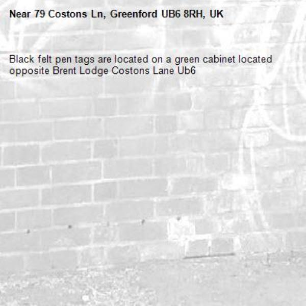 Black felt pen tags are located on a green cabinet located opposite Brent Lodge Costons Lane Ub6 -79 Costons Ln, Greenford UB6 8RH, UK