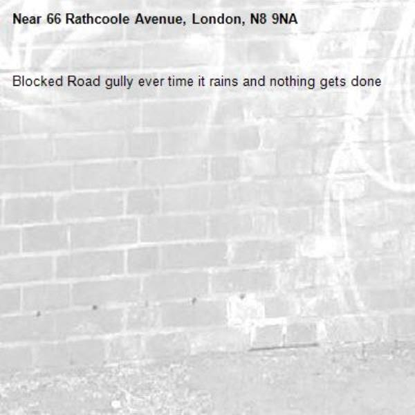 Blocked Road gully ever time it rains and nothing gets done -66 Rathcoole Avenue, London, N8 9NA