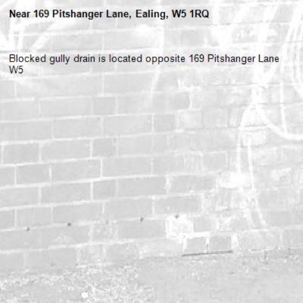 Blocked gully drain is located opposite 169 Pitshanger Lane W5-169 Pitshanger Lane, Ealing, W5 1RQ