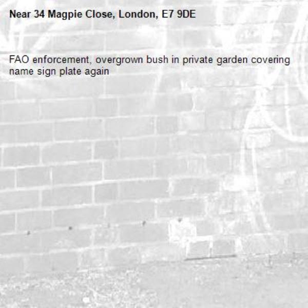 FAO enforcement, overgrown bush in private garden covering name sign plate again -34 Magpie Close, London, E7 9DE