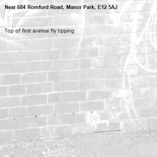 Top of first avenue fly tipping-684 Romford Road, Manor Park, E12 5AJ