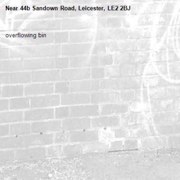overflowing bin -44b Sandown Road, Leicester, LE2 2BJ
