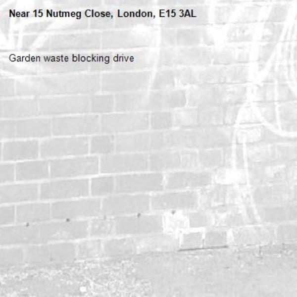 Garden waste blocking drive-15 Nutmeg Close, London, E15 3AL