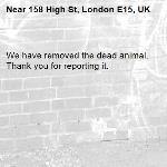 We have removed the dead animal. Thank you for reporting it.-158 High St, London E15, UK