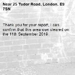 Thank you for your report, I can confirm that this area was cleared on the 11th September 2019.-25 Tudor Road, London, E9 7SN