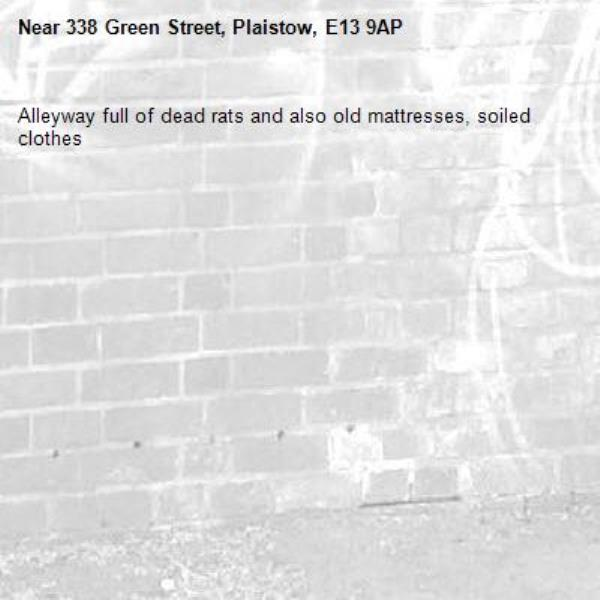 Alleyway full of dead rats and also old mattresses, soiled clothes -338 Green Street, Plaistow, E13 9AP