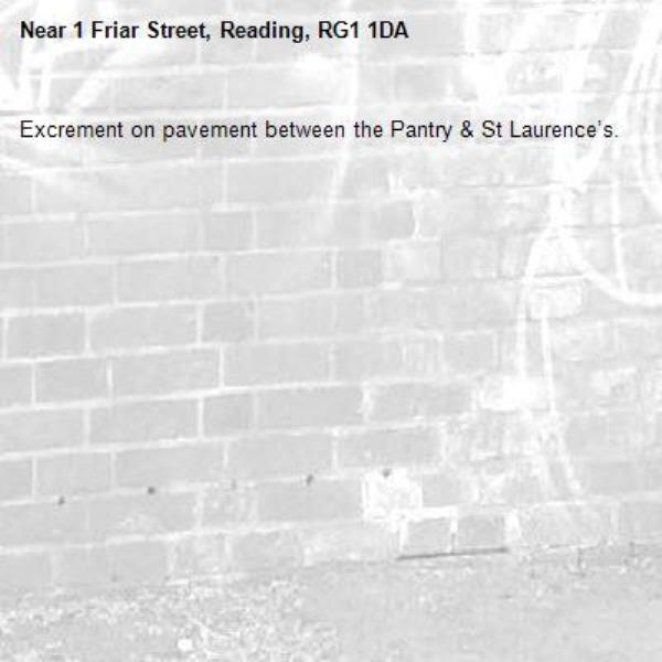 Excrement on pavement between the Pantry & St Laurence's.-1 Friar Street, Reading, RG1 1DA