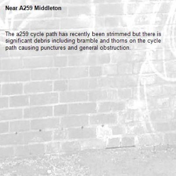 The a259 cycle path has recently been strimmed but there is significant debris including bramble and thorns on the cycle path causing punctures and general obstruction.-A259 Middleton