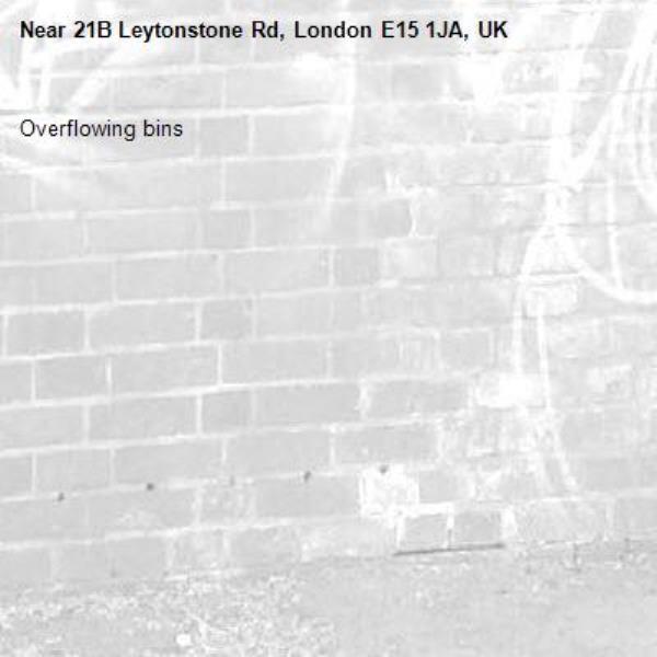 Overflowing bins-21B Leytonstone Rd, London E15 1JA, UK