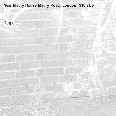 Dog mess-Maury House Maury Road, London, N16 7BS