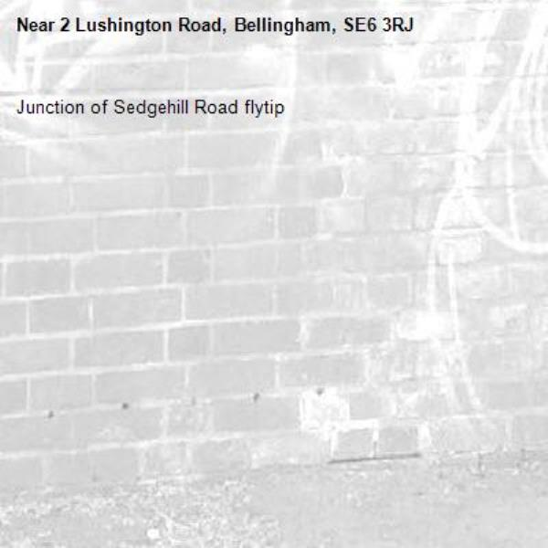 Junction of Sedgehill Road flytip-2 Lushington Road, Bellingham, SE6 3RJ