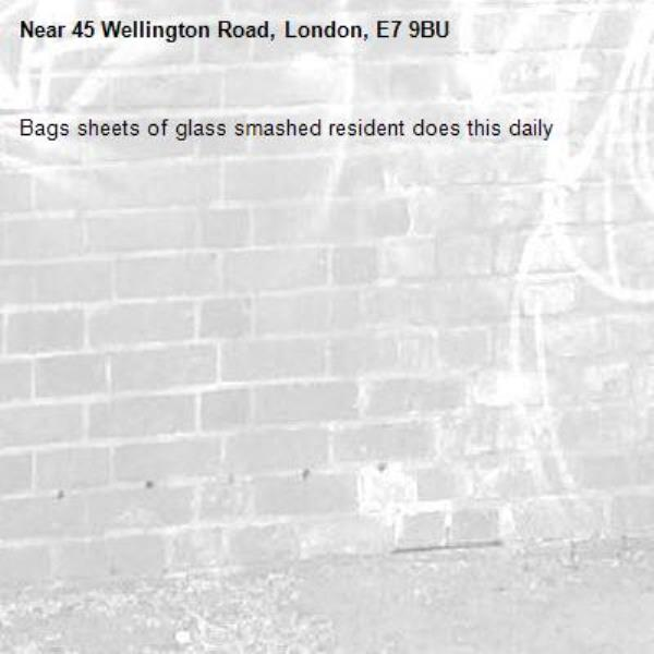 Bags sheets of glass smashed resident does this daily-45 Wellington Road, London, E7 9BU