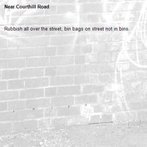 Rubbish all over the street, bin bags on street not in bins. -Courthill Road