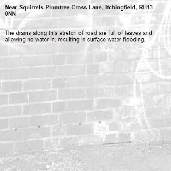 The drains along this stretch of road are full of leaves and allowing no water in, resulting in surface water flooding. -Squirrels Plumtree Cross Lane, Itchingfield, RH13 0NN
