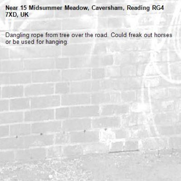 Dangling rope from tree over the road. Could freak out horses or be used for hanging.-15 Midsummer Meadow, Caversham, Reading RG4 7XD, UK