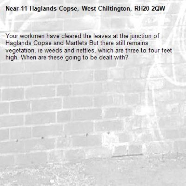 Your workmen have cleared the leaves at the junction of Haglands Copse and Martlets But there still remains vegetation, ie weeds and nettles, which are three to four feet high. When are these going to be dealt with?-11 Haglands Copse, West Chiltington, RH20 2QW