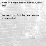 We could not find the dead animal you reported.-240 High Street, London, E15 1AJ