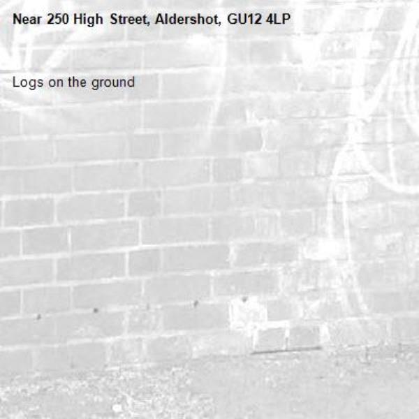 Logs on the ground -250 High Street, Aldershot, GU12 4LP