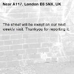 The street will be swept on our next weekly visit. Thankyou for reporting it.-A117, London E6 5NX, UK