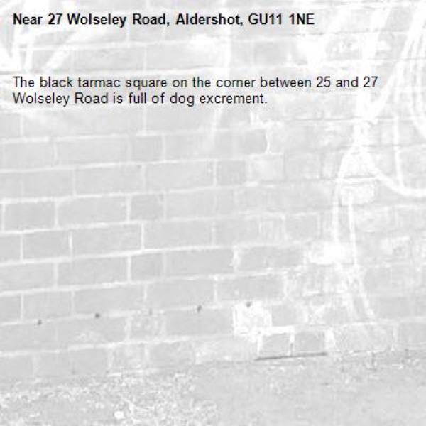 The black tarmac square on the corner between 25 and 27 Wolseley Road is full of dog excrement. -27 Wolseley Road, Aldershot, GU11 1NE