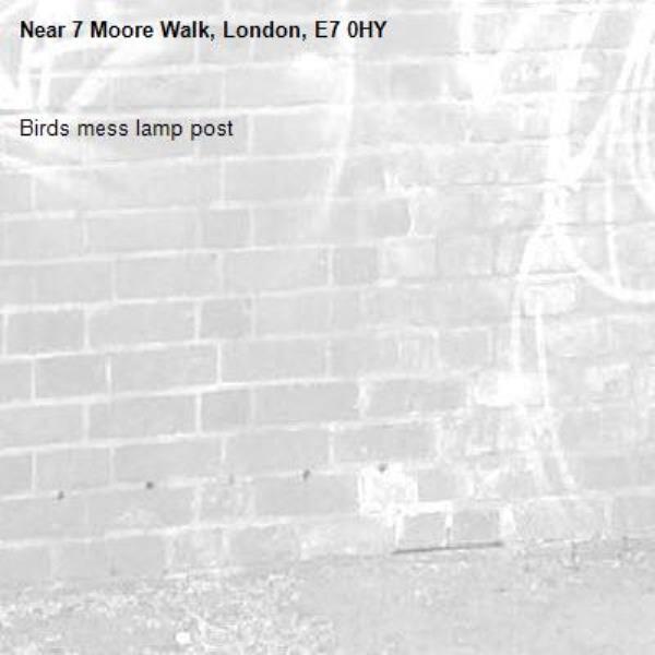 Birds mess lamp post-7 Moore Walk, London, E7 0HY