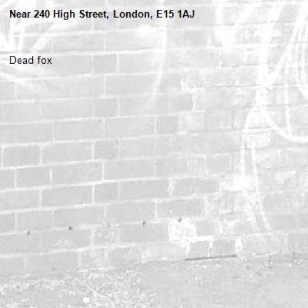 Dead fox -240 High Street, London, E15 1AJ