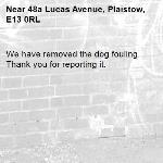 We have removed the dog fouling. Thank you for reporting it.-48a Lucas Avenue, Plaistow, E13 0RL