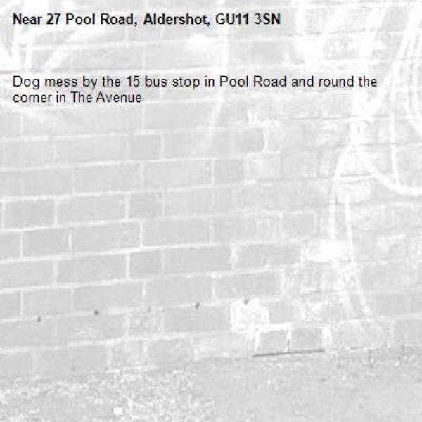 Dog mess by the 15 bus stop in Pool Road and round the corner in The Avenue-27 Pool Road, Aldershot, GU11 3SN