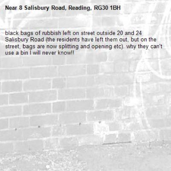 black bags of rubbish left on street outside 20 and 24 Salisbury Road (the residents have left them out, but on the street, bags are now splitting and opening etc). why they can't use a bin I will never know!!-8 Salisbury Road, Reading, RG30 1BH