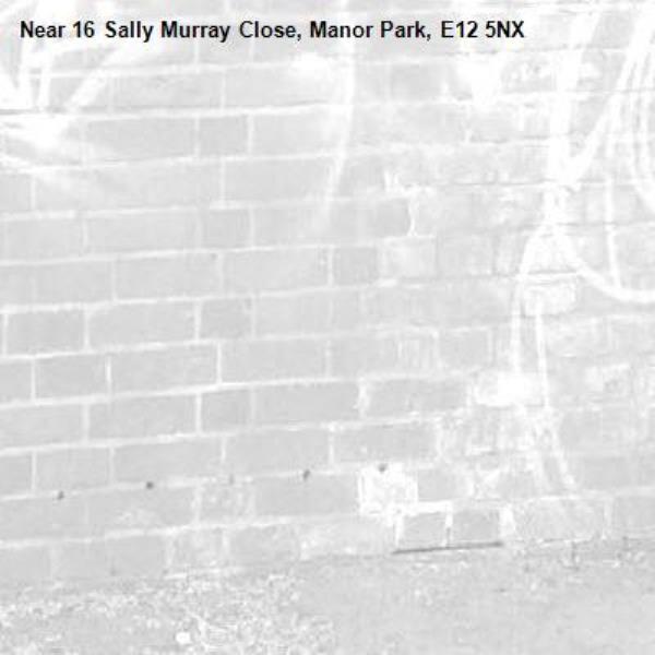 -16 Sally Murray Close, Manor Park, E12 5NX