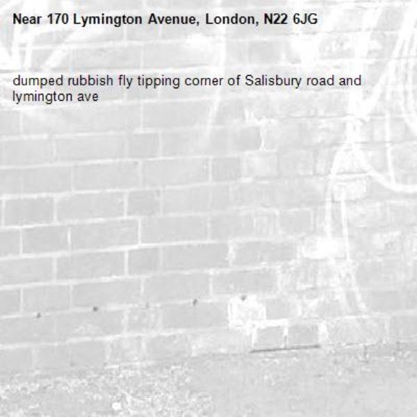 dumped rubbish fly tipping corner of Salisbury road and lymington ave -170 Lymington Avenue, London, N22 6JG