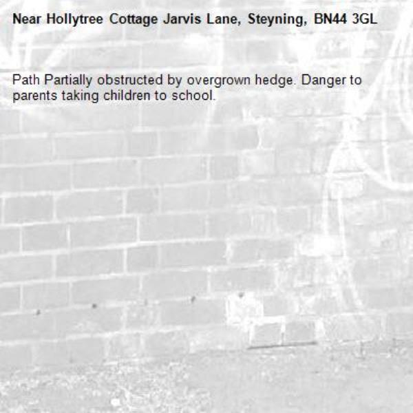 Path Partially obstructed by overgrown hedge. Danger to parents taking children to school.-Hollytree Cottage Jarvis Lane, Steyning, BN44 3GL