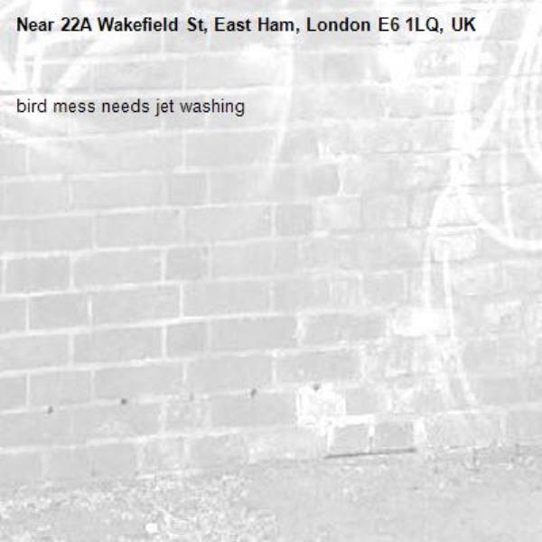 bird mess needs jet washing-22A Wakefield St, East Ham, London E6 1LQ, UK