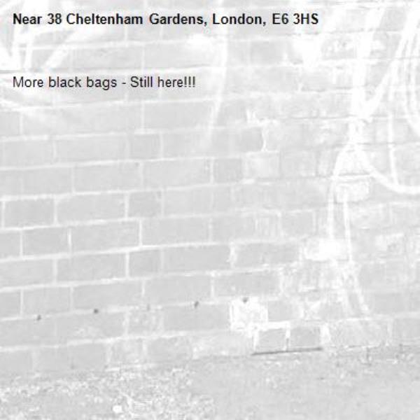 More black bags - Still here!!!-38 Cheltenham Gardens, London, E6 3HS