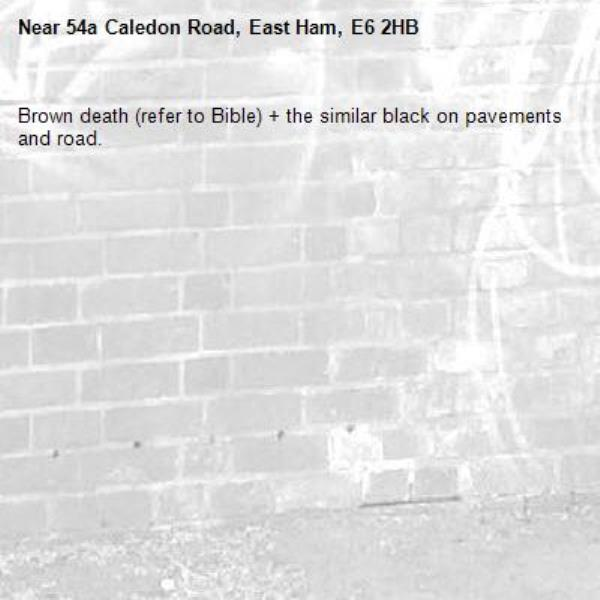 Brown death (refer to Bible) + the similar black on pavements and road.  -54a Caledon Road, East Ham, E6 2HB