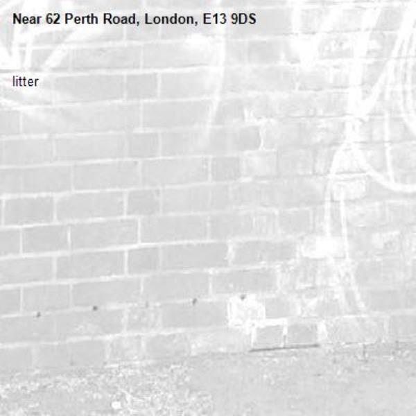 litter-62 Perth Road, London, E13 9DS