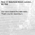 We have cleared the bird mess. Thank you for reporting it.-25 Wakefield Street, London, E6 1NQ