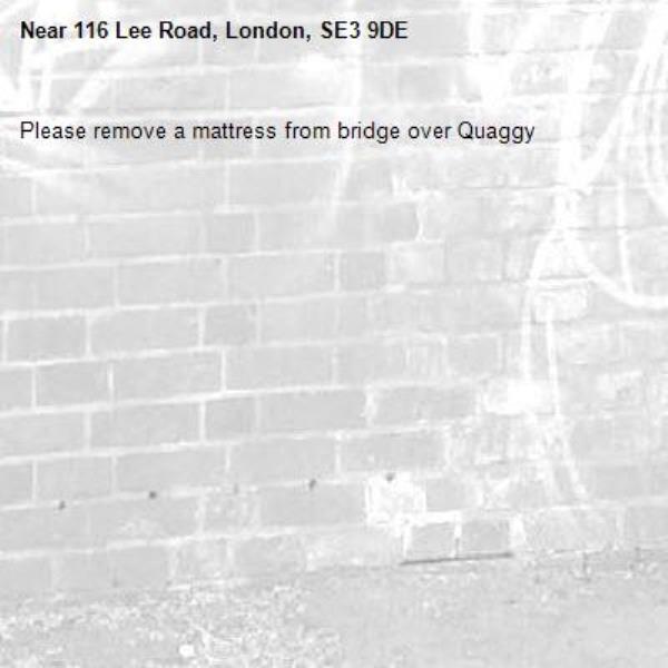 Please remove a mattress from bridge over Quaggy-116 Lee Road, London, SE3 9DE