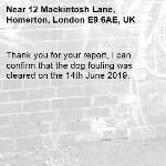Thank you for your report, I can confirm that the dog fouling was cleared on the 14th June 2019.-12 Mackintosh Lane, Homerton, London E9 6AE, UK