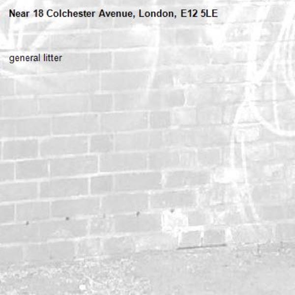 general litter-18 Colchester Avenue, London, E12 5LE