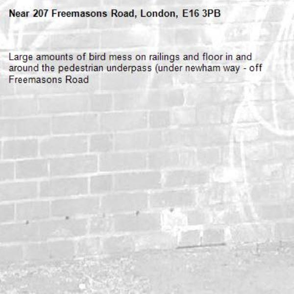 Large amounts of bird mess on railings and floor in and around the pedestrian underpass (under newham way - off Freemasons Road-207 Freemasons Road, London, E16 3PB