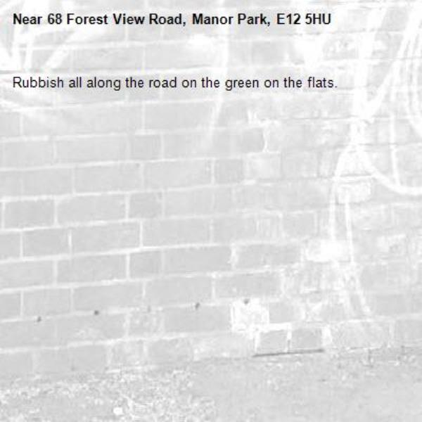 Rubbish all along the road on the green on the flats. -68 Forest View Road, Manor Park, E12 5HU