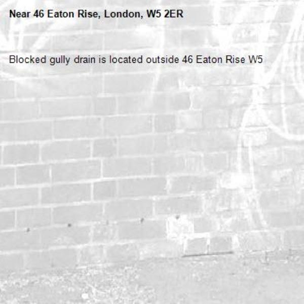 Blocked gully drain is located outside 46 Eaton Rise W5-46 Eaton Rise, London, W5 2ER