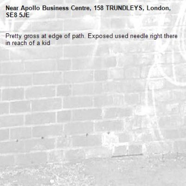 Pretty gross at edge of path. Exposed used needle right there in reach of a kid-Apollo Business Centre, 158 TRUNDLEYS, London, SE8 5JE