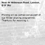 Pruning will be carried out as part of our Winter pruning programme. Thankyou for reporting it.-44 Wilkinson Road, London, E16 3RJ